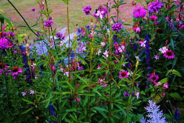 plant by Gloriosa2