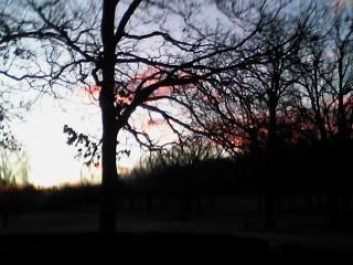 Morning Sky by ILOVEANIME36798