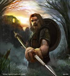 Viking by geors