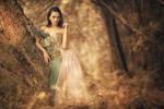 :: Enchanted Forest :: by dewanggapratama