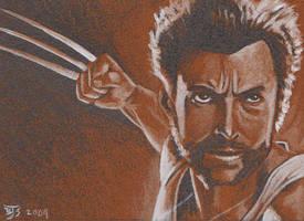Wolverine by shelbysnake