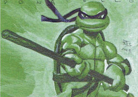 Donatello TMNT by shelbysnake
