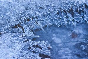 Ice leafs by DeborahBeeuwkes