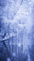 Snowing Willow by DeborahBeeuwkes