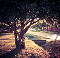 Sunny street by DorottyaS