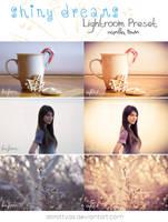 LR preset: Shiny Dreams - Vanilla Town by DorottyaS