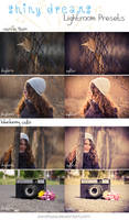 LR preset pack: Shiny Dreams by DorottyaS