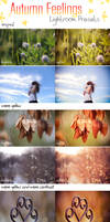 LR Preset Pack: Autumn Feelings by DorottyaS