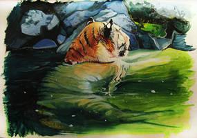 Tiger 2017 by SalamanDra-S