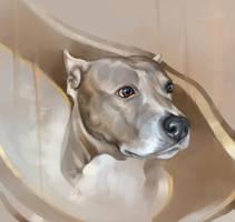 dog333 by SalamanDra-S