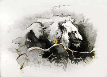 Lion by SalamanDra-S