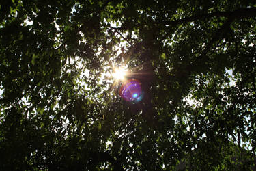 Camera Lens Reflection 1 by corvintaurus