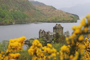 Eilean Donan Castle by Malleni-Art