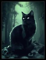 Twilight cat by Michael-Rayne