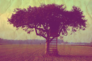 tree of life by ingut