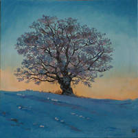 Tree in Winter by v-e-y-a