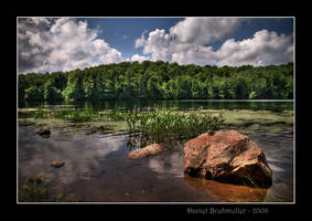 Summer Day by Mystik-Rider