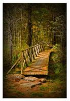 The Bridge by Mystik-Rider