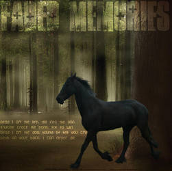 faded memories by missmouse-rawr
