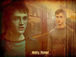 Harry Potter Wallpaper by BreAnn