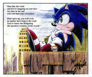 This is Sonic by dkute
