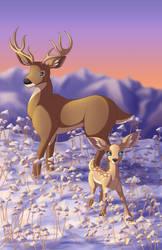 Winter Deer by TiffanySketches