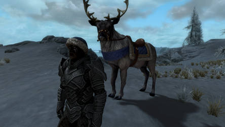 Christmas in Skyrim by trilliondollerman
