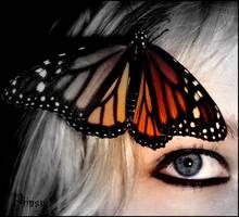 Behind blue eyes... by Piipsy