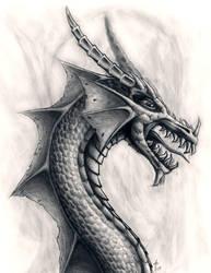 Dragon Cali by IBuro