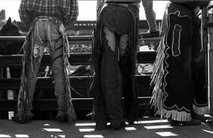 Rodeo 6 by MajesticMayhem