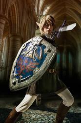 Legend of Zelda - Twilight Battle by Rei-Suzuki