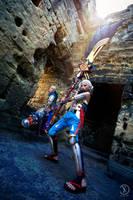Hyrule Warriors - It's Dangerous to go Alone by Rei-Suzuki