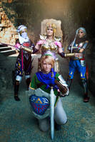 Hyrule Warriors - We are all Heroes by Rei-Suzuki