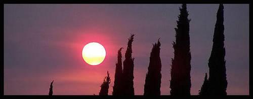Sun by KristyNicole88