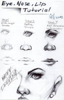 Eye, nose and lip tutorial by blucinema
