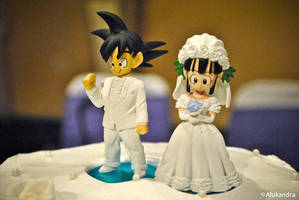wedding photo5 by camlost