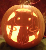 Contract Plz Pumpkin Light by johwee