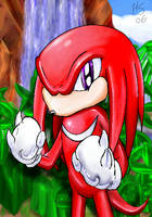 Knuckles - Ready for the Fight by SonicRose