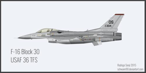 Lockheed Martin F-16 Block 30 USAF 36 TFS by Schwann90
