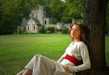 Castle-lawn by charkboy