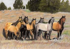 The Wild Bunch - Pastel by Devynn