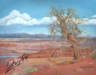 Precipice - Oil and Colored Pencil on Canvas by Devynn