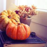 357 - Pumpkin Season by ElyneNoir