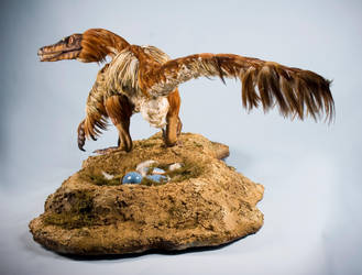 Velociraptor mongoliensis 1:1 Scale by nwfonseca