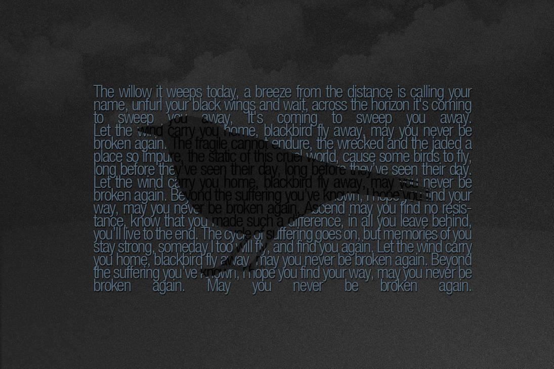 Blackbird by byrney