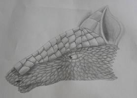 Armadillo head by Finion591