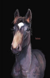 Inka by ElliPuukangas