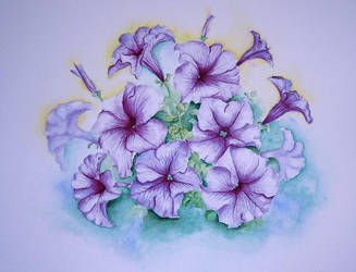 petunia by yushnikova