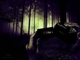 Slender Woods by SallibyG-Ray