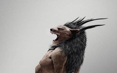 Lion by barnaulsky-zeek